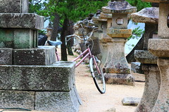 Lone bicycle in Miyajima (Davide C.77) Tags: pink bicycle japan miyajima