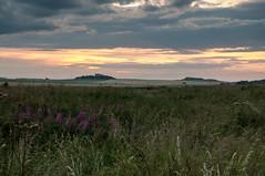 Bamburgh (rexlindis) Tags: bamburghcastle northumberland seahouses coast coastal landscape sea seascape