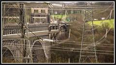 Super Structure. (peterdouglas1) Tags: menaistraits britanniabridge bridges a55expressway anglesey directrailservices class66 66305 pylons lion hi