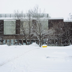 Campus (mathieu.forcier) Tags: simple banal winter snow north montreal quebec canada emptiness minimal