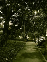Streets (p.mamede) Tags: calle strade الشوارع برازيليا البرازيل 街道 улицы бразилиа бразилия 巴西 rue streets 巴西利亞 brésil brazil brasil brasília