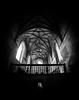 Tomar (Hugo Miguel Peralta) Tags: tomar convento portugal cristo templarios black white preto e btanco nikon 8 mm