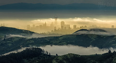 Shangri-La Revealed (mikeSF_) Tags: california sanfrancisco sf ca city skyline transamerica bankofamerica salesforce coit hill88 marin county hawk slacker tennesseevalley rodeo tamalpais mount mt pentax 645 645z mikeoria amdscape cityscape hills fog tennessee hill 88 wwwmikeoriacom