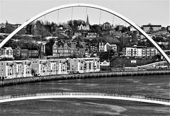 Millennium Bridge -  Black and White (Gilli8888) Tags: newcastle quayside newcastleupontyne newcastlequayside tyneandwear blackandwhite bridge northeast millenniumbridge buildings architecture curve archbridge arch riverside river rivertyne tyne portoftyne
