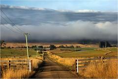A Beautiful Morning _ Ouse (Trains In Tasmania) Tags: australia tasmania morning mist fog ouse clouds scene scenery trainsintasmania stevebromley tasmaniancountryside tasmanianscenery road lane landscape telegraphpole derwentvalley upperderwentvalley canoneos550d ef35350mm13556lusm