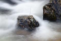 Filé d'eau (Marc ALMECIJA) Tags: eau water long exposure longue pose nature rivière river tarn agout