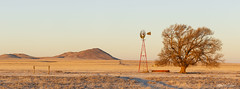 High Plains Morning_Pano_20A8879_8881 (Alfred J. Lockwood Photography) Tags: alfredjlockwood nature landscape morning newmexico windmill tree mountain highplains clearsky winter panorama