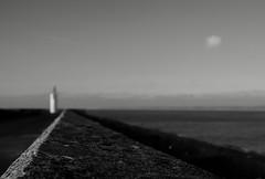 """""""What gets us into trouble is not what we don't know... (ericguéret) Tags: port harbour dielette sea phare lighthouse mer la manche blackandwhite cotentin presquîleducotentin capdelahague noiretblanc littlecloud petitnuage seascape seashore rivage borddemer"""