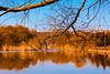 HARİKA MANZARAYI. . . (murathanduran1) Tags: tepekent büyükçekmece istanbul türkiye turkey fotoğraf photo bahar spring gölet doğa nature