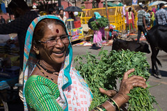 Trimbakeshwar (JohnMawer) Tags: maharashtra trimbakeshwar nasik nashik india trimbak in