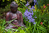 Buddha with the bluebells (Four Seasons Garden) Tags: uk red england flower stone garden four spring seasons buddha may ornament walsall fourseasonsgarden