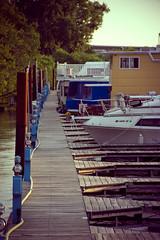 dock (kujira_) Tags: stpaul mississippiriver flooded kujira mitakon nikkor18200mmf3556g lensturbo sonya6000