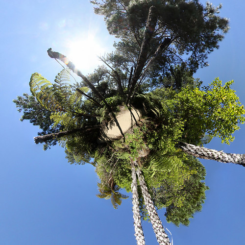 Cathedral Cove Walkway planet