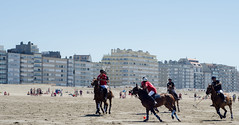 Scapa Sport Beach Polo 2014 (JTPhotographe) Tags: wallpaper horse beach sport julien nikon belgique casino knokke wallpapers plage polo chevaux scapa 2014 zout thys questre sportquestre d7k horsephotography d7000 knokkezout jtpic nikond7000 jtphotographe julienthys
