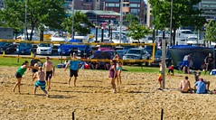 2014-07-04 BBV Hat Draw Tournament (105) (cmfgu) Tags: holiday net beach sports ball court md sand outdoor 4th july maryland baltimore tournament bikini volleyball coed athlete fourth independenceday league 4s innerharbor fours bbv rashfield hatdraw