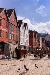 Bryggen (NykO18) Tags: people building bird animal norway shop person store europe business manmade housing bergen bryggen hordaland vestlandet
