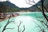 DSC_0084-2 (ajinurvita) Tags: bandung alam danau wisata kawahputih belerang