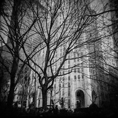 Madison Square Park (J.T.R.) Tags: newyorkcity film brooklyn manhattan 100 asa holga120s autaut lomographyfilm analogkid