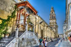 Calle Cardenal Herrero - Córdoba (Andalucía) RI-51-0000034