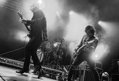 Hoodoo Gurus (PETEDOV) Tags: festival livemusic sydney phantom splendourinthegrass stoneage davefaulkner gurus hoodoogurus jamesbaker bradshepherd sitg peterdovgan petedov clydebramley