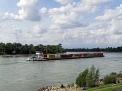 Rhein bei Benrath 2 (KL57Foto) Tags: germany deutschland nrw fluss düsseldorf rhine rhein strom rheinland rhineland rheinufer 2014 benrath urdenbach landeshauptstadt kl57foto