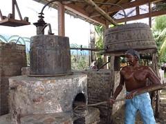 018 (alexandre.vingtier) Tags: haiti rum caphaitien nazon clairin rhumagricole distillerielarue