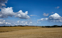 140808 Forth Valley - stubble and cumulus from above Linlithgow. (ScotiaIsles) Tags: scotlandaugust cumulushumilis