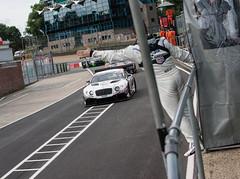 #17 - Humaid Al Masaood / Steven Kane - M-Sport - Bentley Continental GT3  @TheStevenKane  @MSportLtd (Steven Roe Images) Tags: cars racing hatch endurance brands gt4 brandshatch gt3 britishgt avontyres stevenroeimages
