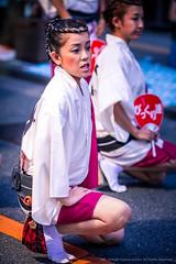 2014_08_30_Mitaka_AwaOdori_5D3_048_HD (Nigal Raymond) Tags: festival japan dance  mitaka matsuri awaodori     100tokyo cooljapan fudouren nigalraymond wwwnigalraymondcom 5dmk3 5d3 sakuraren  mitakaren awaodori2014 bikkuriren