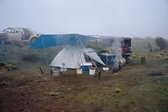 Wasteland, 2014 (jamiehladky) Tags: camping camp mist 120 film cooking grass car fog mediumformat dawn tents kodak smoke australia tent explore nsw toyota 6x9 campsite wasteland hilux portra400 gw690 explored fuji6x9 inexplore jamiehladky hladky