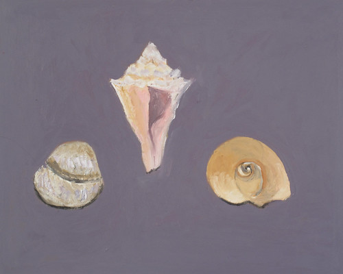 "Shells (darkest background) - oil on board 12"" x 16"" $400"
