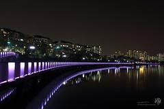 (Biryu Kim) Tags: nightscape lakepark gwanggyo