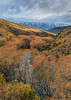 Autumn valley, winter mountains, Lindis Pass-Tarras Road. (milo42) Tags: new newzealand island sony south location zealand southisland otago 2014 lindispass a7r landscapesshotinportraitformat httpwwwchrisnewhamphotographycouk sonya7r