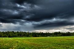 Severe Warned Thunderstorm Black River Bridge, NB (nbstormchaser) Tags: sky storm nature weather clouds landscape landscapes scenery newbrunswick thunderstorm lightning storms severeweather cumulonimbus outflow skyporn rainshaft