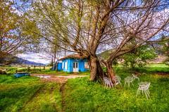 Blue House (Nejdet Duzen) Tags: trip travel blue house mountain lake tree home nature grass turkey chair trkiye mavi izmir glck da aa sandalye gl im turkei seyahat doa bozda demi