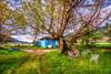 Blue House (Nejdet Duzen) Tags: trip travel blue house mountain lake tree home nature grass turkey chair türkiye mavi izmir gölcük dağ ağaç sandalye göl çim turkei seyahat doğa bozdağ ödemiş