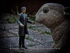 Doctor who Meeting Giant Rabbit