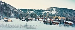 Chalets in Lauenen (somabiswas) Tags: chalets snow winter lauenen switzerland landscape outdoors saariysqualitypictures