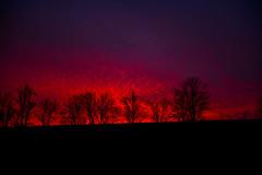 Firery Sundown (Daveyal_photostream) Tags: sundown redsky coatesville pennsylvania nature nikon nikor meandmygear mygearandme mycamerabar sky clouds trees tree d600 sunset
