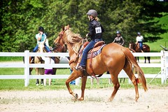 Horse Show (JustJamieLeigh) Tags: horse horses horseshow horsebackriding riding western westernriding westerngames westernpleasure cowgirl canon60d canon 60d equestrian equine equines competition girl girls gaming