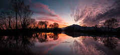 Panorama - Fontanei (swàllero) Tags: xt1 fujifilm fuji pianezza torino turin pond lake sunset tramonto light dawn colors water reflection
