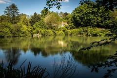 Prior Park, Bath (mandyhedley) Tags: prior park bath nationaltrust bridge water lake woodland