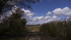 The way ahead (Englepip) Tags: path landscape hampshire overton stevenson sky shadows hedges