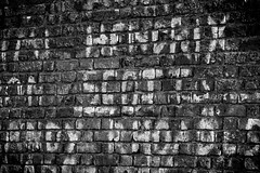 Hendrix Wall (Chris Sinfield) Tags: cheam cheampark wall texture bricks graffiti uk monochrome photography textures hendrix