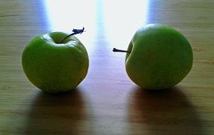 Apples. Duo. Senile (AzIbiss) Tags: apple duo two fruits green samsung mobilesamsungmobole samsungdigital samsungphotography samsunggts5610 s5610 boken counterlight backlight old senile tomsk westernsiberia russia siberia blur stilllife mort nature window urban indoors amateur ruby3