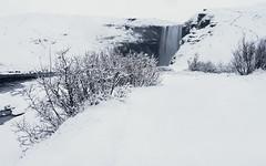 Skogafoss (Craig Hollis) Tags: skogafoss skogar iceland south winter north snow wonderland waterfall