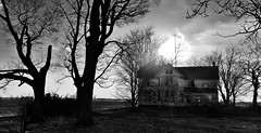 life after people....(HMM) (BillsExplorations) Tags: monochrome monochromemonday blackandwhite abandoned abandonedillinois abandonedhouse rural ruraldecay ruraldeterioration decay forgotten shuttered trees creepy oncewashome