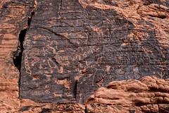 Petroglyph panel (300 B.C.E. to 1150 C.E. ), Atlatl Rock loop trail, Valley of Fire State Park, Nevada (www.clineriverphotography.com) Tags: usa atlatlrock rockart petroglyph nevada 2016 valleyoffirestatepark 2016nevada location