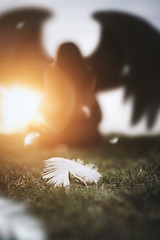 Transformation (vicorven) Tags: nikon new nikkor 50mm sunrise sun light bright outdoor feather angel art wings
