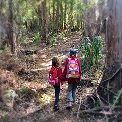 Explorers and mountaineers. Mt Beattie track.